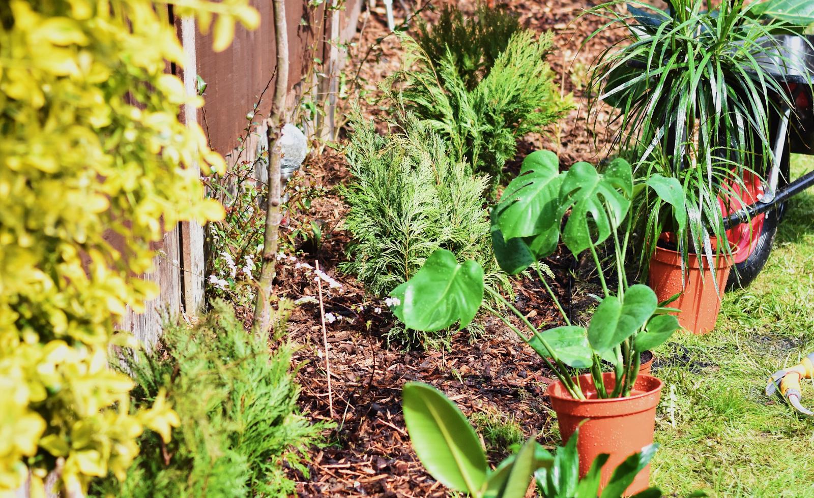 produtos-porteira-rural-jardinagem-jardim.png